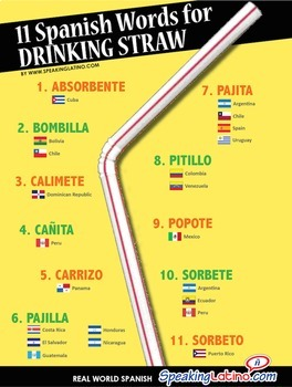 Spanish Words for Drinking Straw Printable Posters in 4 Sizes