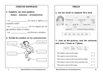 Spanish activities 2º Primary School
