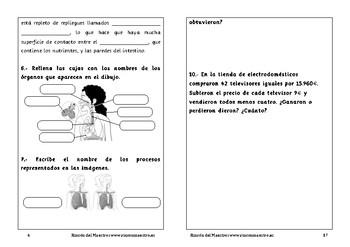 Spanish activities 6º Primaria School