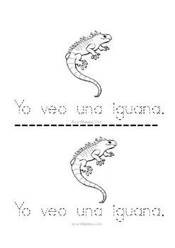 Spanish and English Alphabet & Sight words Kindergarten Decodable Books 1