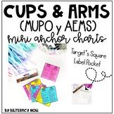 Spanish AEMS y MUPO, English CUPS & ARMS Mini Pocket Anchor Charts!