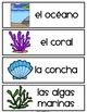 Spanish and English Ocean Habitat Vocabulary