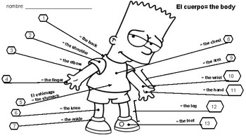 Spanish body parts worksheet by The Fun Language Classroom | TpT