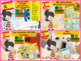 Spanish bundle 3 Family and pets lessons and Unit Plan