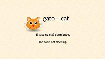 Spanish masculine nouns ending in o