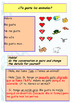 Spanish pets, animales domesticos for beginners booklet