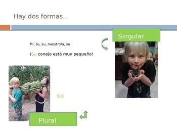 Spanish possessive adjectives