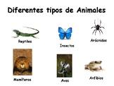 Spanish posters - clasificación de animales