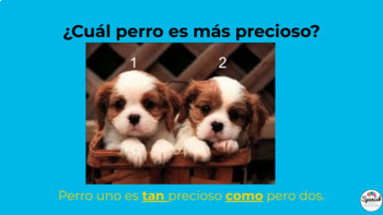 Spanish speaking activity: comparisons of equality (tan / tanto)