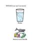 Special Ed Science! Ocean Pollution