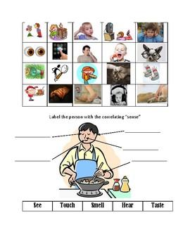 Special Education: 5 senses picture sort
