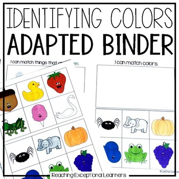 Special Education Adapted Workbook: Colors
