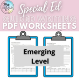 Autistic Support/ Special Education Writing Level 2 Emergi