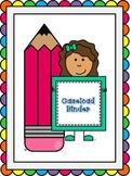 Special Education Caseload Binder