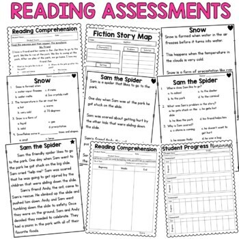 Special Education Reading Assessments for Progress Monitoring
