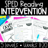 Reading Intervention for Special Education   Phonics, Sight Words, & Reading