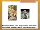Special Education Science - Foundational Text - Classifying Animals