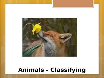 Classifying Animals - Special Education Science - Foundational Text