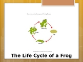 Special Education Science - Foundational Text - Frog Life Cycle