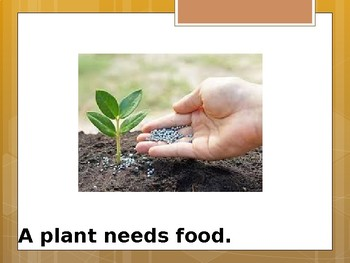 Needs of a Plant - Special Education Science - Foundational Text