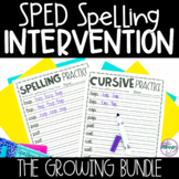 Special Education Spelling and Intervention BUNDLE