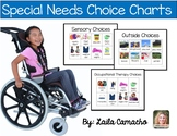 Special Needs Choice Charts