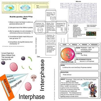 Mitosis Quiz & Scrapbook Fun SPED/ODD/ID/Autism/ESL/SLD