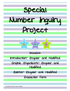 Special Number Inquiry Project