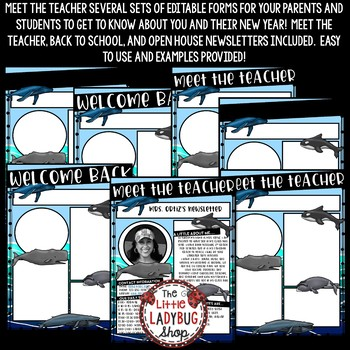 Meet the Teacher Newsletter- Whale Themed- Meet The Teacher Template Editable