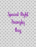 Special Right Triangle Flag