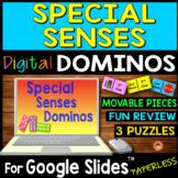 Special Senses DIGITAL DOMINOS for Google Slides