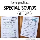 Special Sounds Worksheets {Set 1}