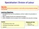 Specialisation & Division of Labour - Economics / Microeconomics
