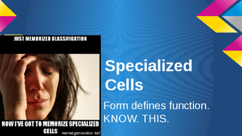 Specialized Cell Types Powerpoint
