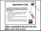 Specialized Cells Lesson - Biology PowerPoint Lesson & Student Notes Package