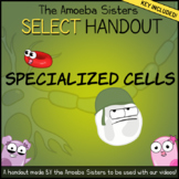 Specialized Cells- SELECT Handout + Answer Key by The Amoeba Sisters