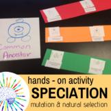 Speciation Activity: Students model Mutation, Natural Sele