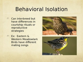 Speciation PowerPoint