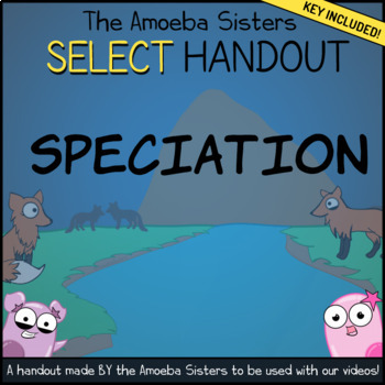 Speciation- SELECT Recap Handout + Answer Key by Amoeba Sisters | TpT
