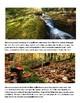 Species Creations & Adaptations