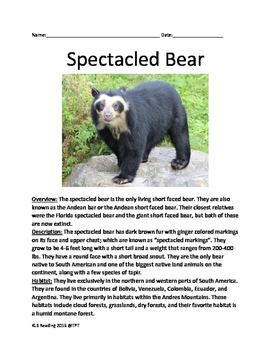 Spectacled Bear - informational article facts information questions word search