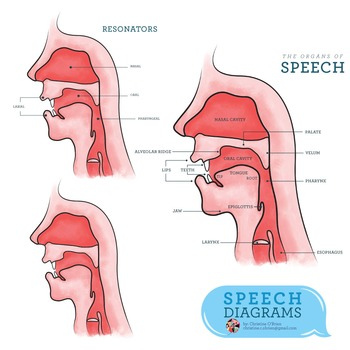 Speech Diagrams Clip Art