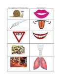 Speech/Fluency Bookmark Visual - Carryover FREEBIE