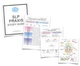 Speech-Language Pathology (SLP) Praxis Study Guide