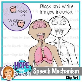 Speech Mechanism Clip Art {Hope for Speech}
