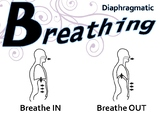 Speech Pathology Diaphragmatic Breathing Poster