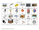 Speech Sound Inventory Evaluation Tool: Bundle