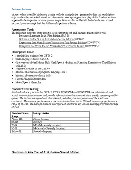 Speech Therapy Evaluation Report (non-school setting)