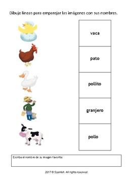 Matching Activity: Nouns & Vocabulary (English Version)