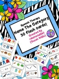 Speech Therapy Name the Category Group 30 flash cards 3 by 6 size